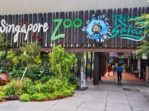 tu-locker-abs-Singapore-Zoo