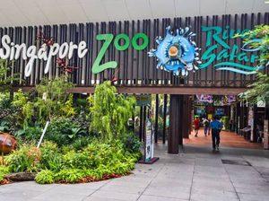 tu-locker-abs-Singapore-Zoo